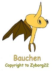 Bauchen.png