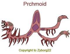 Prchmoid.png